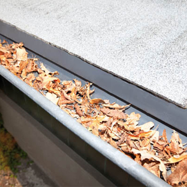 Batavia 2x2m Guttering Protection
